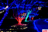Christmas Holiday Lights of Southeastern Virginia