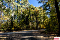 Fall comes to Colonial Parkway